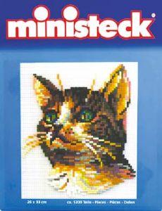Ministeck Huiskat